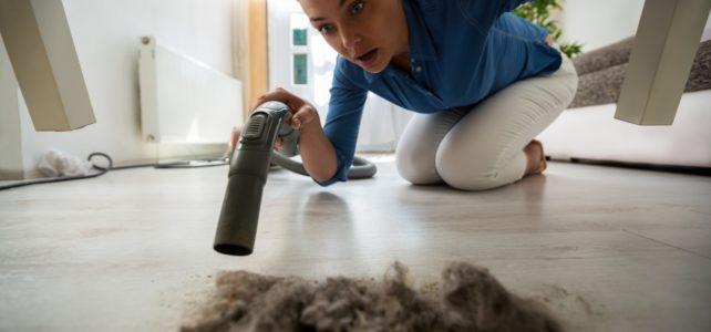 kobieta znalazła stertę kurzu pod łóżkiem